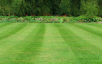 professional Old Boston grass cutting services