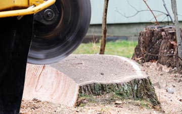 tree stump grinding Old Boston, Merseyside